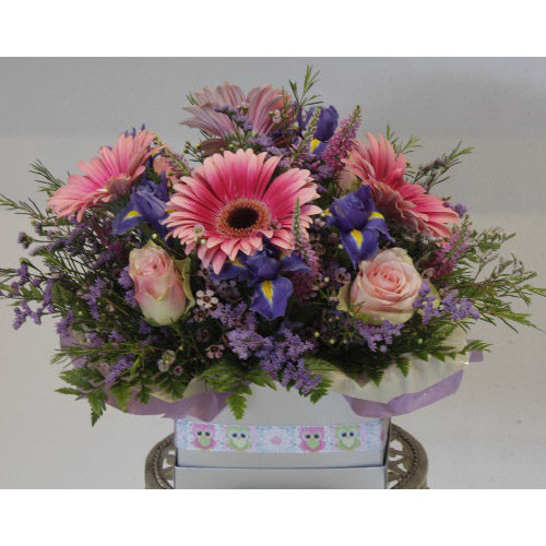 Pink Rose and Pink Daisy Assorted Floral Arrangement