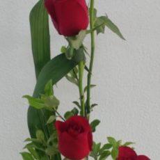 Red Roses Arrangement in Bucket